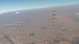 DIPC 4 DAY 6: CANOPY FORMATION