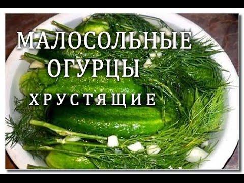 рецепт как малосолить огурцы