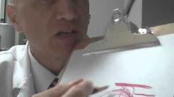 hqdefault - Back Pain Doctors Charleston, Sc