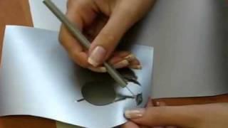 Термоперенос пленкой(Термотрансферный перенос - это перенос изображения (логотипа, фотографии, рисунка, надписи) с помощью транс..., 2010-07-30T07:13:31.000Z)