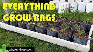 Grow Bags 101 - Welcome to my Grow Bag Urban Homestead