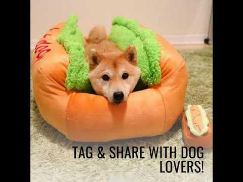 hot-dog-bed