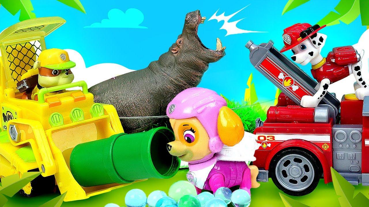 Los Paw Patrol rescatan un hipopótamo. Vídeos de juguetes. La Patrulla Canina en español