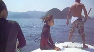 http://cocomo.jp で行く夏の日帰り☆爽快ボートダイブ(船上)
