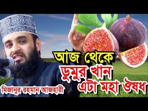 ডুমুর ফল খান । এটা মহা ঔষধ । মিজানুর রহমান আজহারী । Bangla Waz 2019 Mizanur Rahman Azhari