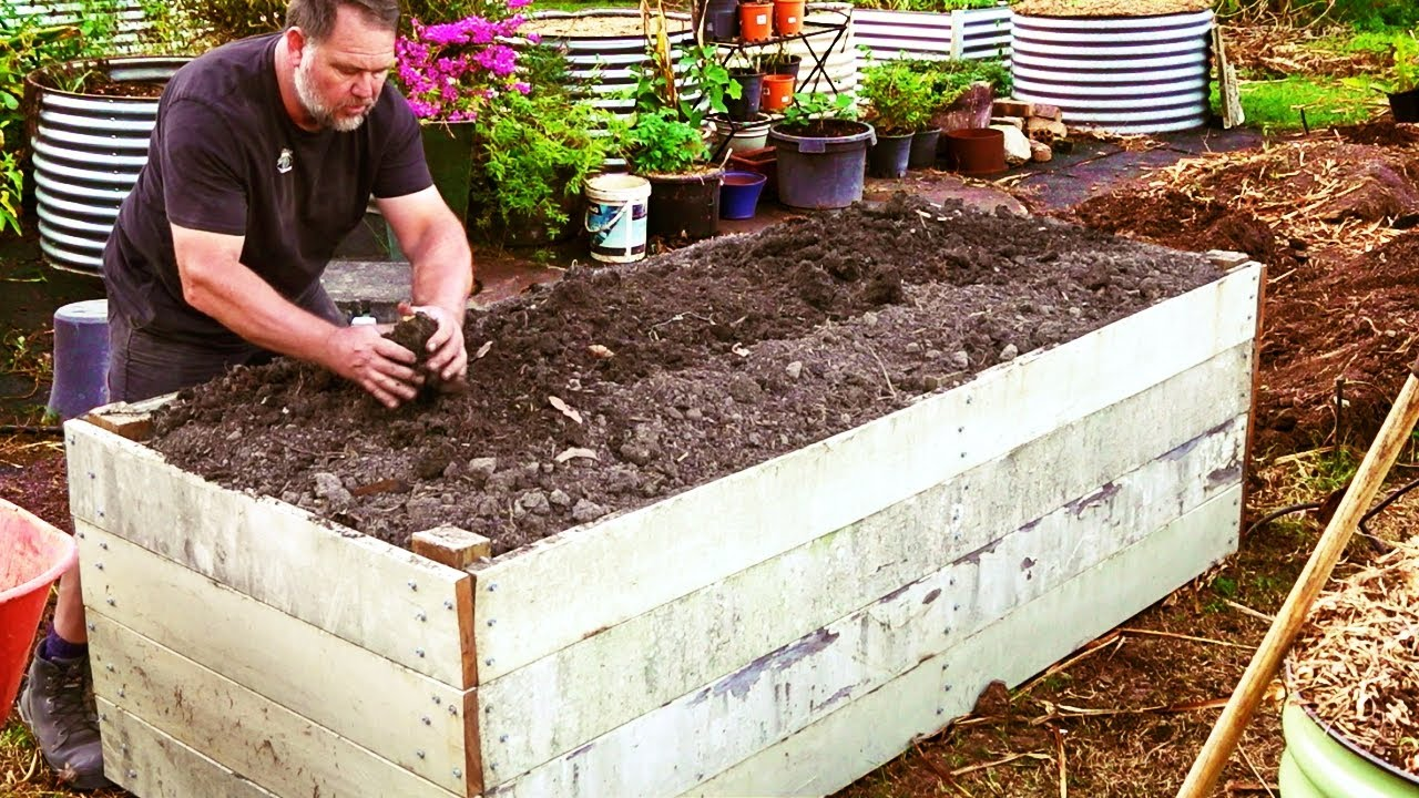 How To Fill Raised Vegetable Garden Beds And Save Money Youtube