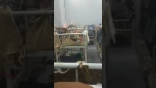 Ethiopian in Saudi Arabia Prison