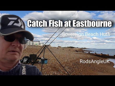Catch Fish At Eastbourne: SOVEREIGN BEACH HUTS