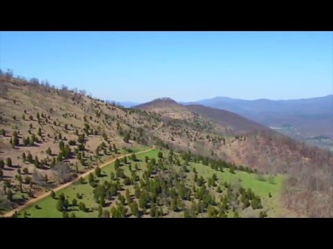 852 Acres For Sale on Elkhorn Mountain in Moorefield West Virginia