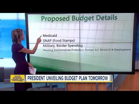 Huge cuts to food stamps part of Trump