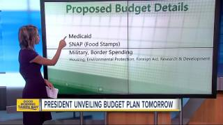 Huge cuts to food stamps part of Trump\'s budget proposal