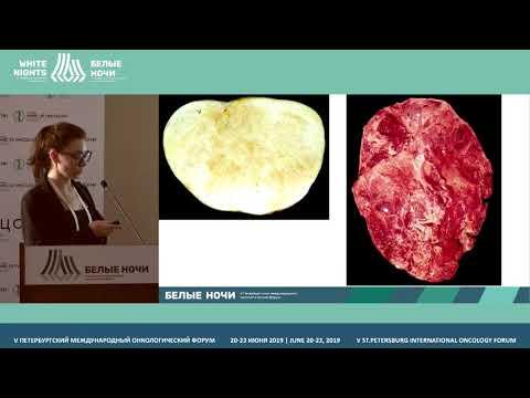 Опухоли яичников: патоморфология для рентгенолога (Хохлова А.В.)