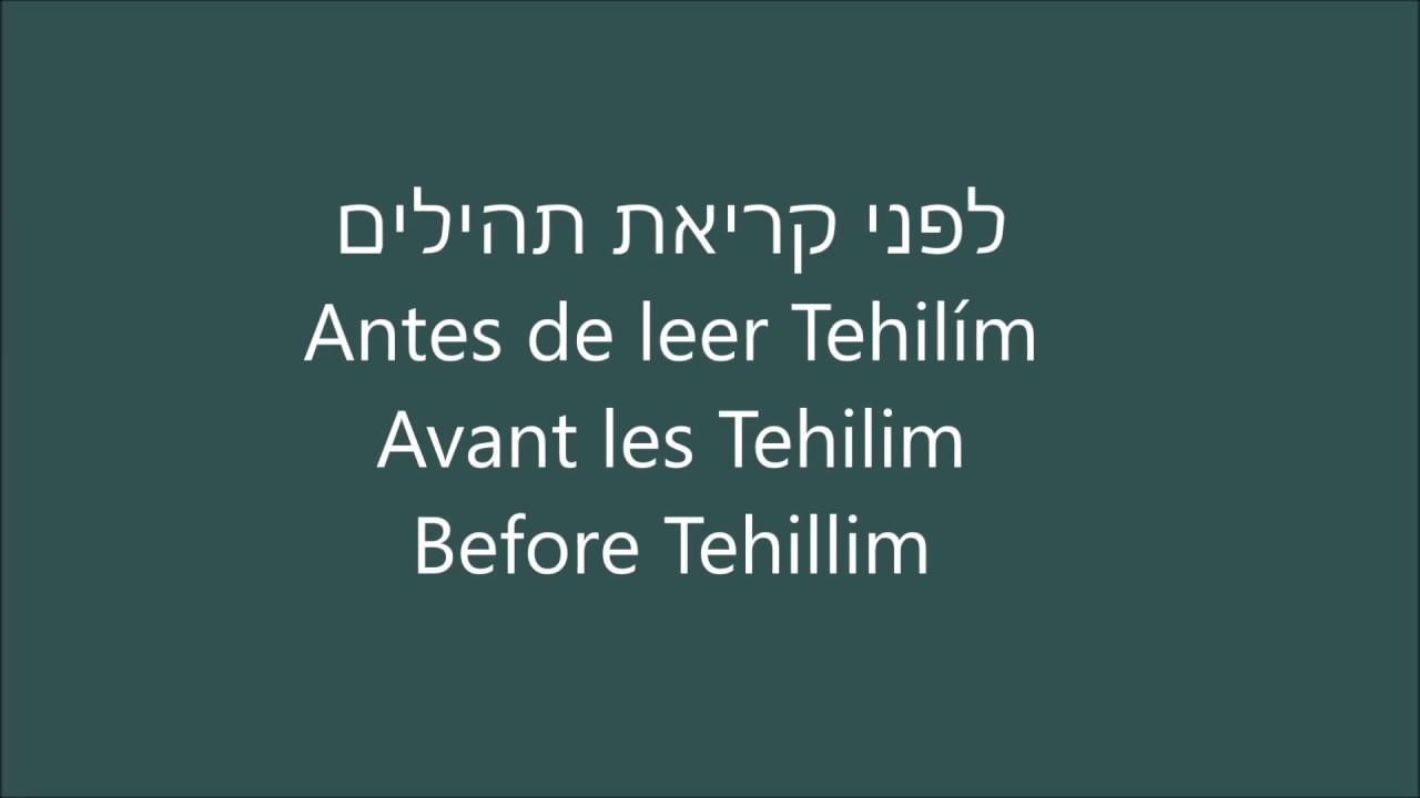 Prayer Before Reciting Tehillim - תפילה לפני קריאה ספר התהילים