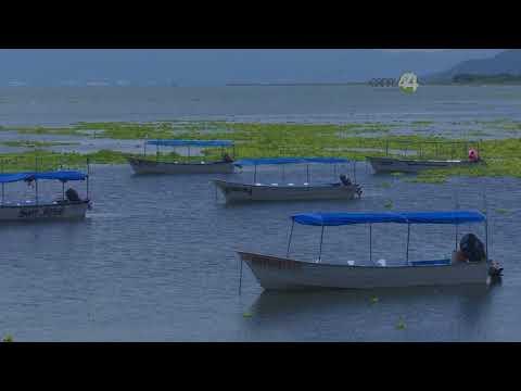 Preocupa a ambientalistas la contaminación del lago de Chapala, por pesticidas y fertilizantes