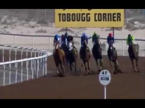 Jebel Ali 23/02/2018 Race 1