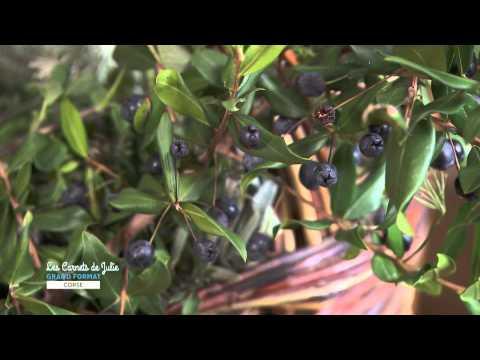 recette-:-tourtes-aux-herbes-sauvages---les-carnets-de-julie