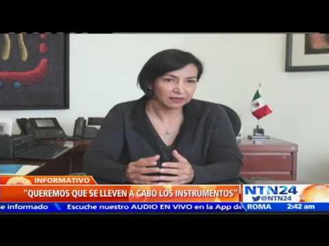 """Socorro Flores asegura que revocatorio podría """"facilitar el diálogo"""" en Venezuela"""