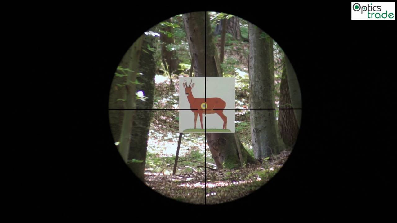 Minox zx i reticle plex subtensions youtube