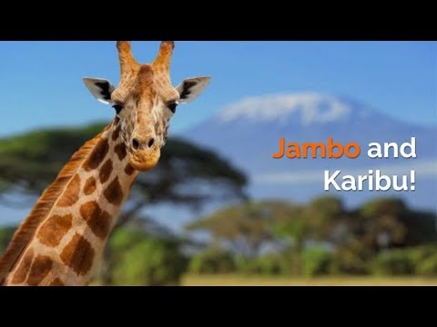 Jambo and Karibu ~ Ease My Safari!