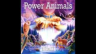 The Owl--Power Animals by Niall