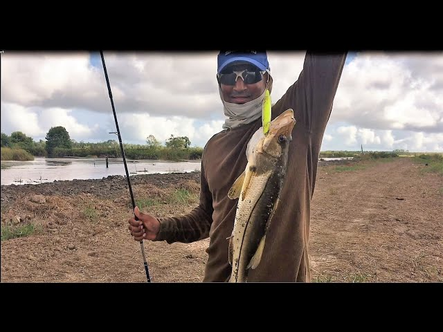 Fishing for snook and pataka at Rust en Werk - Suriname