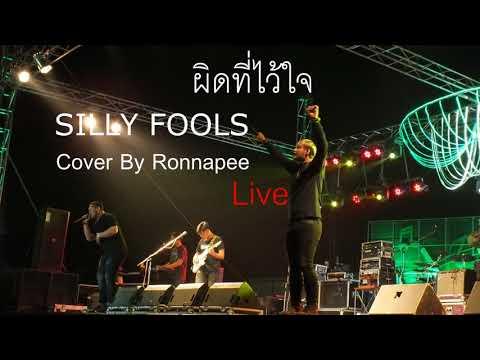 ผิดที่ไว้ใจ - Silly Fools (Cover) | รณพีร์ [Ronnapee Band] Live