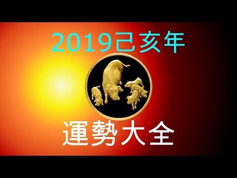 2019年己亥年運勢大合集:肖豬者