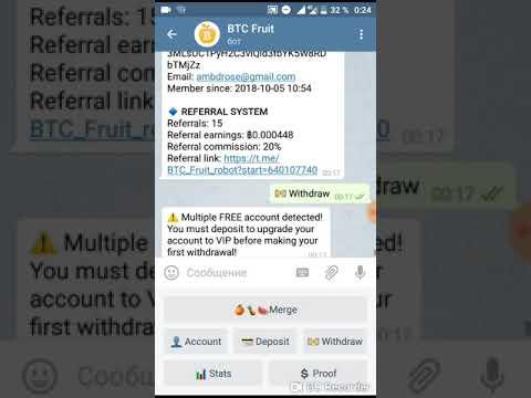 Panduan Bot dalam Grup Telegram CoinDaily - CoinDaily