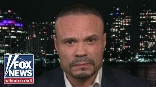 Dan Bongino reacts to Trump's 'take the guns first' comment