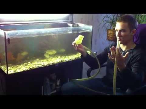 Аквариумистика для любителей. Полная чистка аквариума.