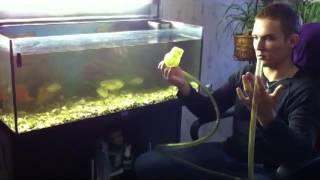 Аквариумистика для любителей. Полная чистка аквариума.(первый видео-гайд от RAZDOLBAI ENTERTAINMENT), 2014-06-12T15:33:20.000Z)