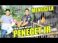 Menggila Murai Batu Peneget Jr Milik Wahyu Idryanto Juara  Di Latpres Hidayat  Mp3 - Mp4 Download