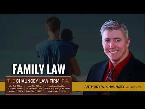 How Is Child Custody Decided By The Court In Florida?   (877) 315-5107