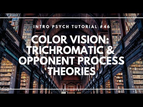 "Thumbnail for the embedded element ""Color Vision: Trichromatic and Opponent Process Theories (Intro Psych Tutorial #46)"""