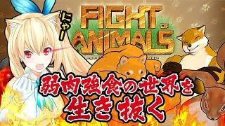 【焼肉定食】これSNSでよく見てた動物たちじゃん!!【Fight of Animals】