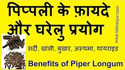 पिप्पली के फ़ायदे और घरेलु प्रयोग | Pippali Ke Fayde | Benefits of Piper Longum