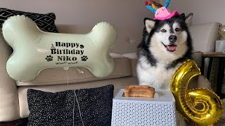 Niko's 6th Birthday! Her And Phil Fight Over Birthday Cake!!