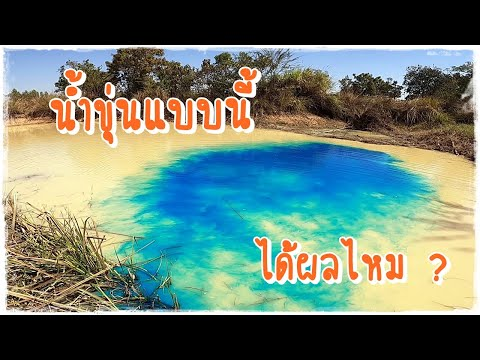 เปลี่ยนสีน้ำในบ่อที่ขุ่นๆ ให้เป็นสีฟ้าใสคือน้ำทะเล ด้วยวิธีง่ายๆใครๆก็ทำได้