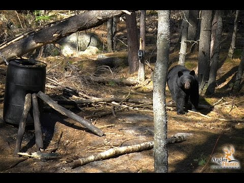 2017 Season | E2: Ontario Spring Black Bear
