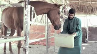 PRAVASAM malayalam shortfilm 2016