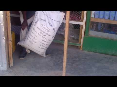 Man lifts a 50 kilogram bag of sugar with his teeth!!