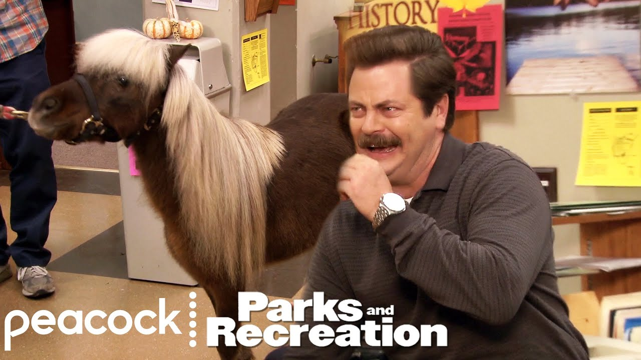 Download Ron Loves Lil' Sebastian - Parks and Recreation