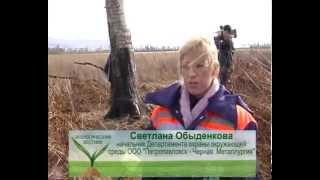 Экология вестник № 13 СТС Биробиджан(Востребована ли в обществе сегодня профессия эколог, задачи экологической службы горнодобывающего предпр..., 2014-10-20T03:14:27.000Z)