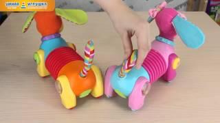Игрушки Tiny Love Догони меня «Собачка Фред» и «Собачка Фиона»(http://www.inteltoys.ru/catalog/314/prod2120.html http://www.inteltoys.ru/catalog/314/prod1532.html Эти игрушки способствуют развитию у малыша навыков., 2014-03-05T05:51:09.000Z)