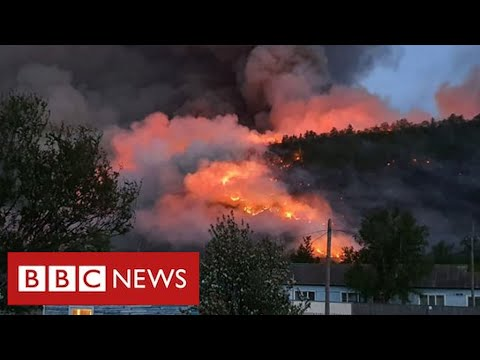 Wildfires in Arctic Circle release record amounts of greenhouse gases  - BBC News