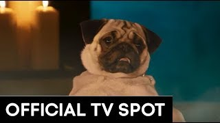 """SHOW DOGS   """"BARKING MAD"""" TV SPOT"""