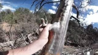 VR 360 Thumb Butte Hike - Prescott, AZ