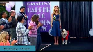 """Dog With a Blog video """"Dog on a Catwalk"""""""