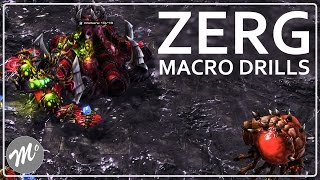 How to Train Zerg Macro: Macro Drills - A Portal to StarCraft (Episode 7 Part 2)