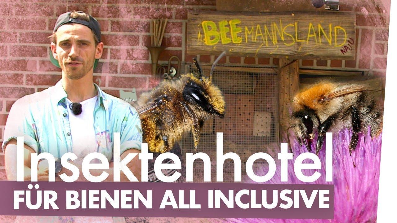 Flottes Insektenhotel bauen – Bienen DIY  | Kliemannsland